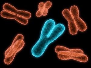Genetic Reconstruction