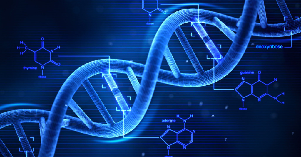 DNA test to prove paternity